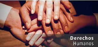 La Seguridad Social: Derecho Humano N° 22
